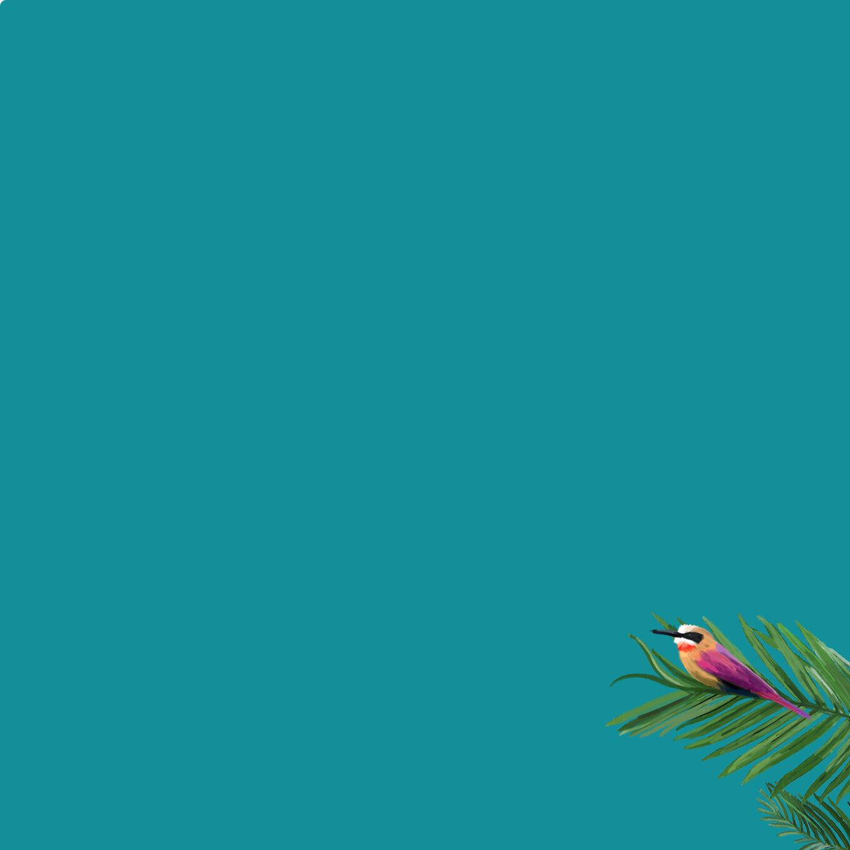 Cybex Platinum DJ Khaled Collection Background