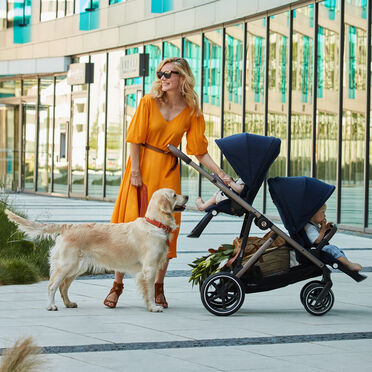 Cybex Gold Strollers