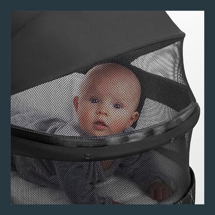 Cybex Platinum Baby Priam Lux Carry Cot Image