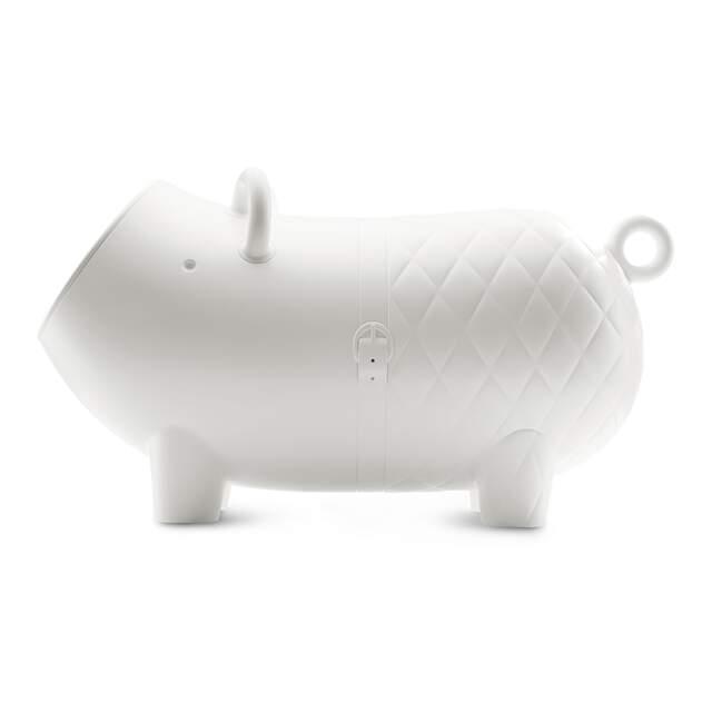 Hausschwein - White